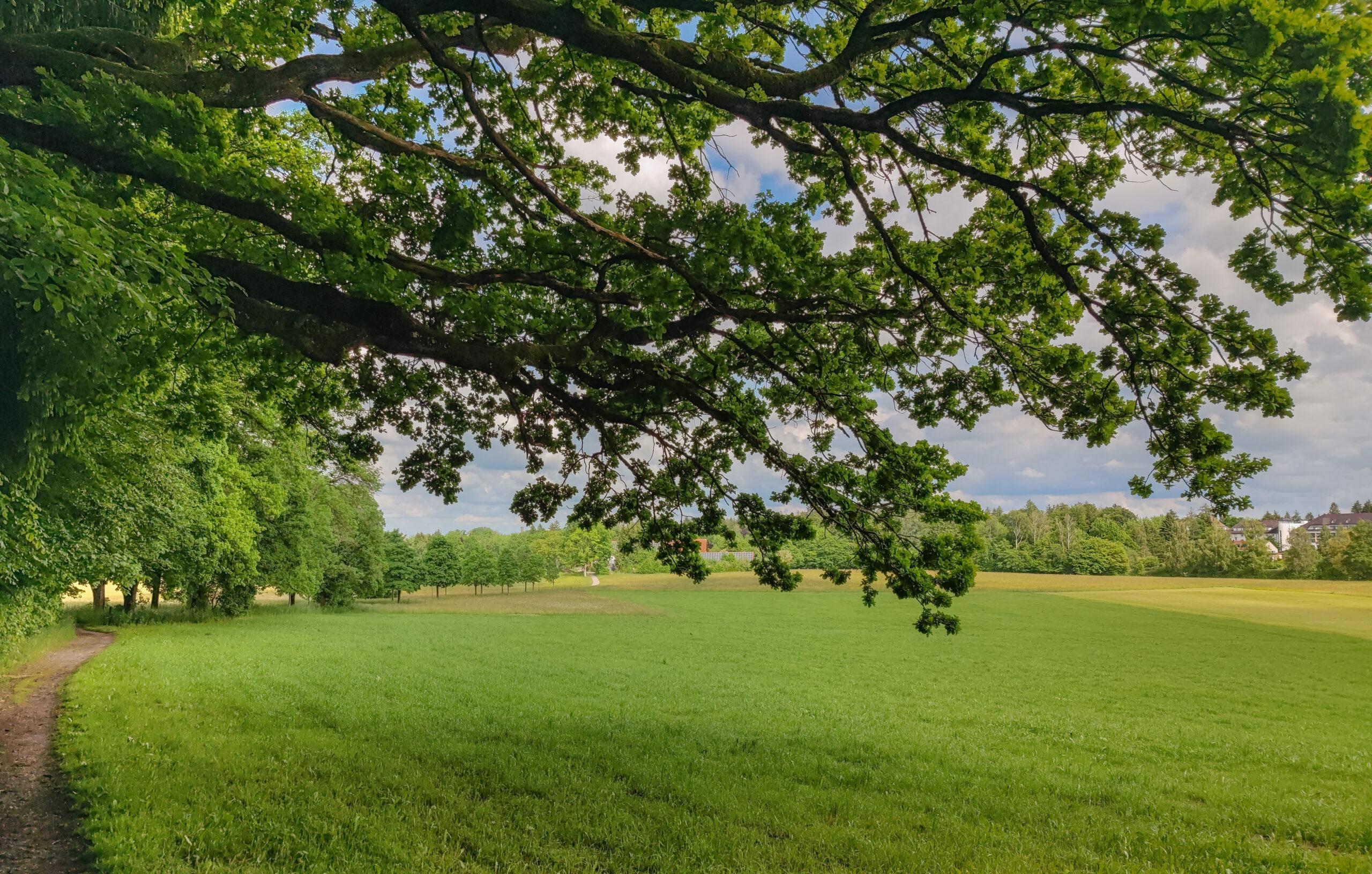 Weitwinkel Landschaftsaufnahme